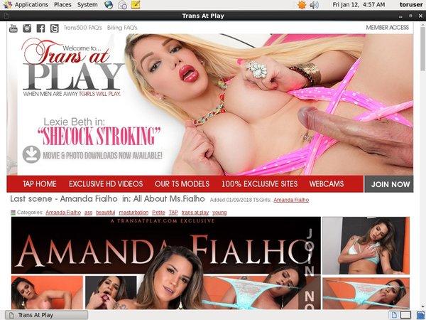 Transatplay.com Vend-o.com